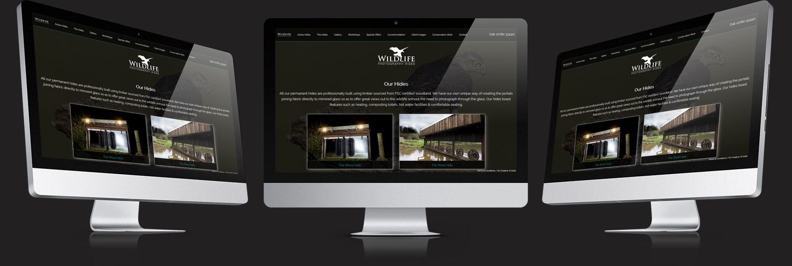 Stamford Web Design - Wildlife Photo Hides